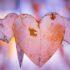 نشانه های خطرناک روابط عاطفی